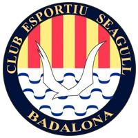 Escudo del Club Esportiu Seagull