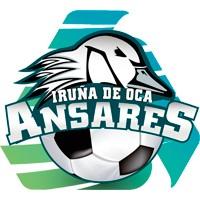 Escudo del Club Deportivo Ansares