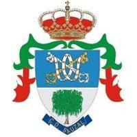 Escudo del Club Deportivo Sauzal